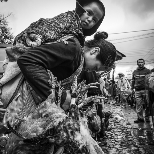 Social Documentary Photography – Chicken Sellers In Mexico