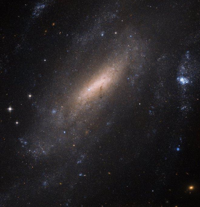A closer look at IC 5201