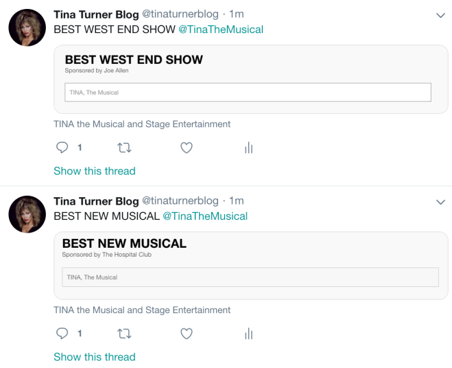 TINA The Musical Stage Awards Musical 2019 - 3