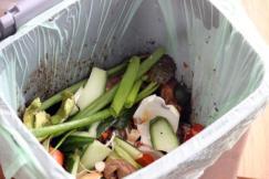 Compost-Bin.jpg